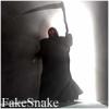 FakeSnake
