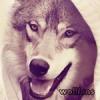 wollfens